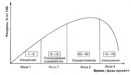 структура жизненного цикла